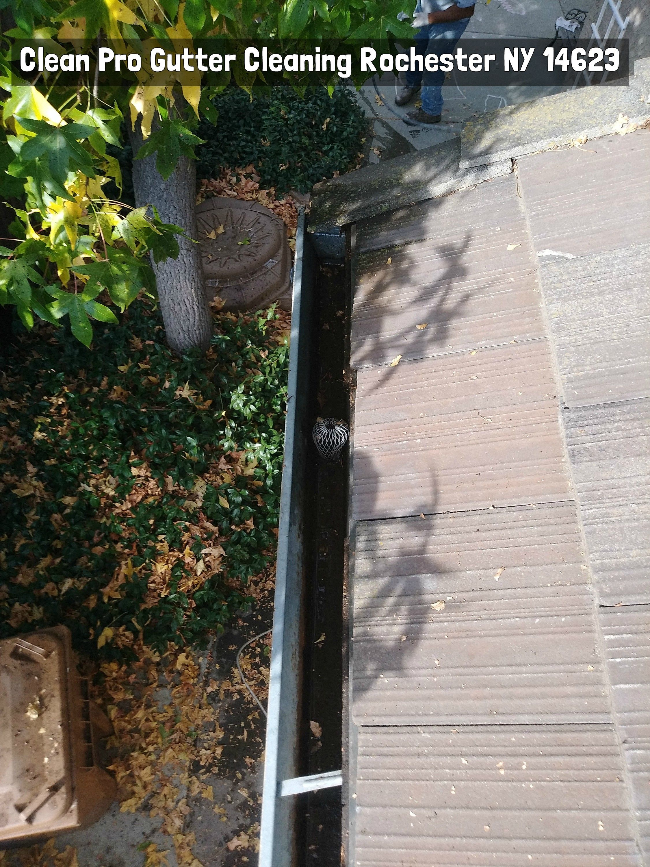 Clean Pro Gutter Cleaning Rochester Ny 14611 Cleaning Gutters Gutter Rochester
