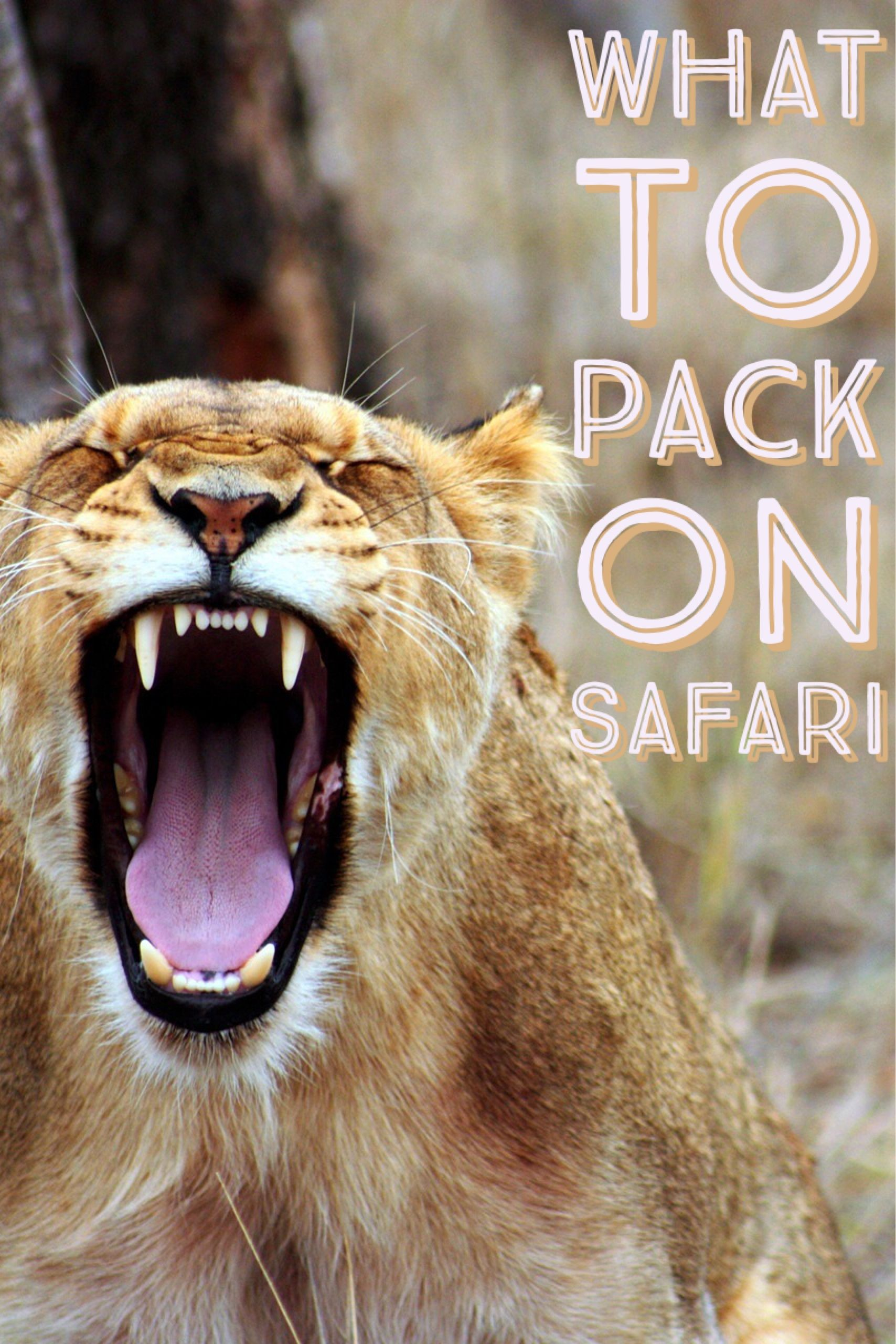 Wondering What To Wear On Safari In Africa From South Kenya Tanzania Here Is The Ultimate Ng List