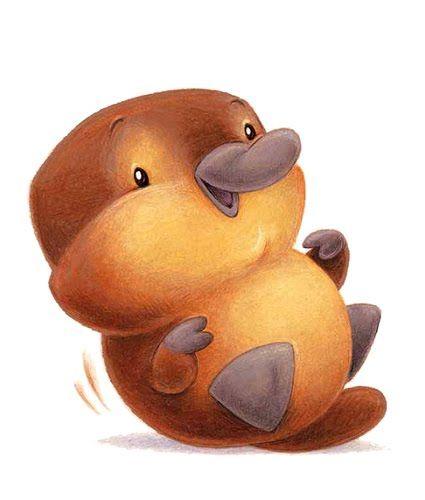 baby platypus platypus pinterest schnabeltier tiere und kritzeleien. Black Bedroom Furniture Sets. Home Design Ideas