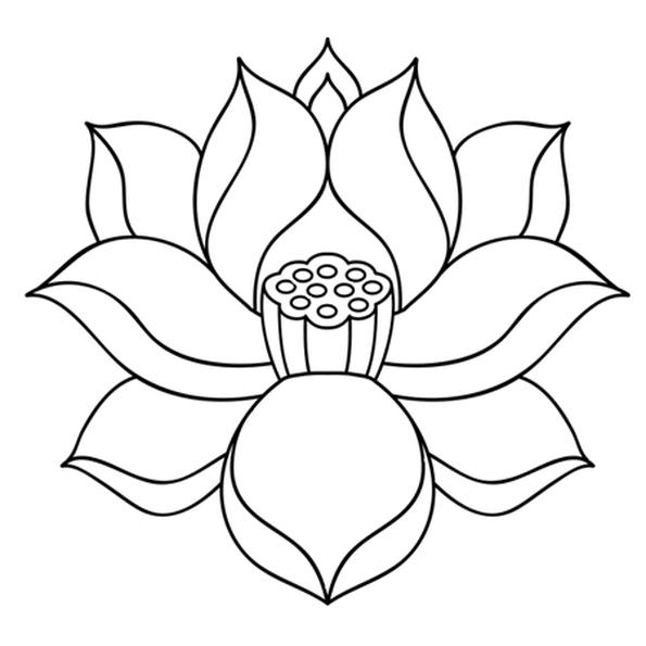 Fleur De Lotus Zen Coloriage Fleur Dessin Fleur De Lotus