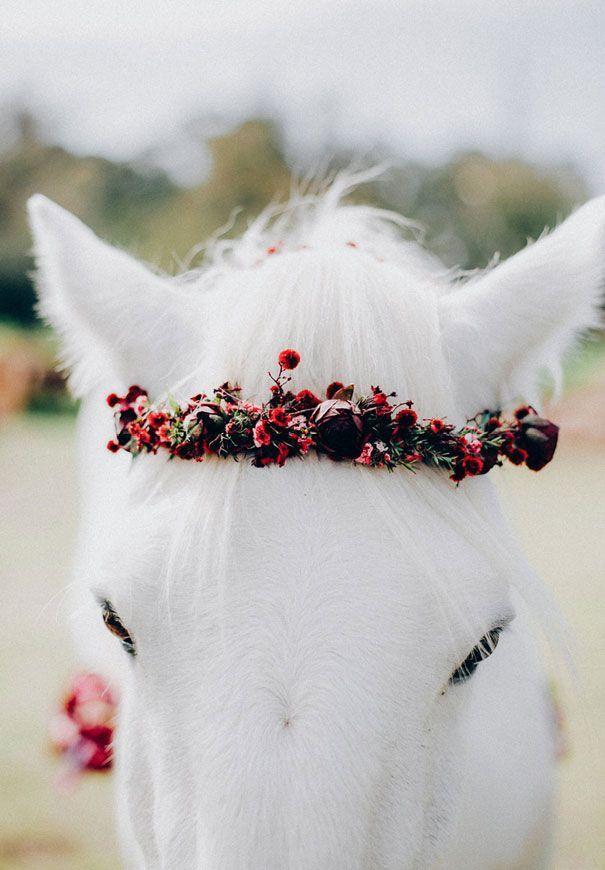 Blumenkrone geschmückt Pferd - Anne Brule #flowerdresses