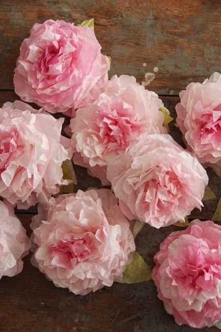 Comment Faire Des Roses Avec Filtre A Cafe
