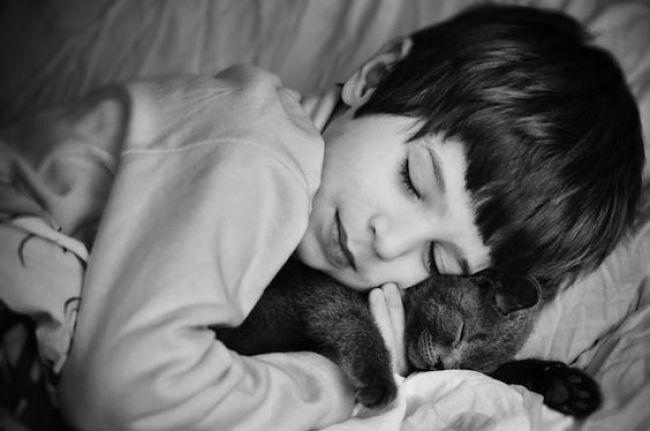 Criança e gato de estimação