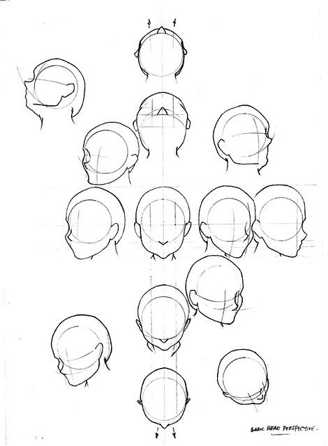 Head Perspective Drawing The Human Head Human Head Human Drawing