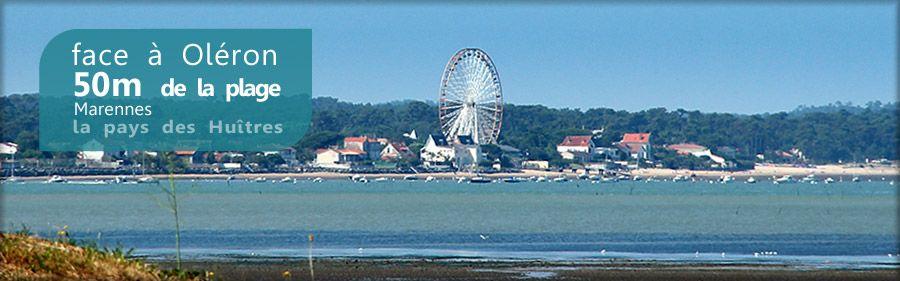 Les propriétaires du Parc Résidentiel de loisirs Le Domaine des Pins à Marennes, face à l'ile d'Oléron, nous ont confié la création de leur site Internet