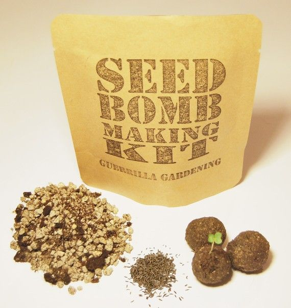 Seed Bomb Making Kit  Foxglove seed mix by TheMinistry on Etsy