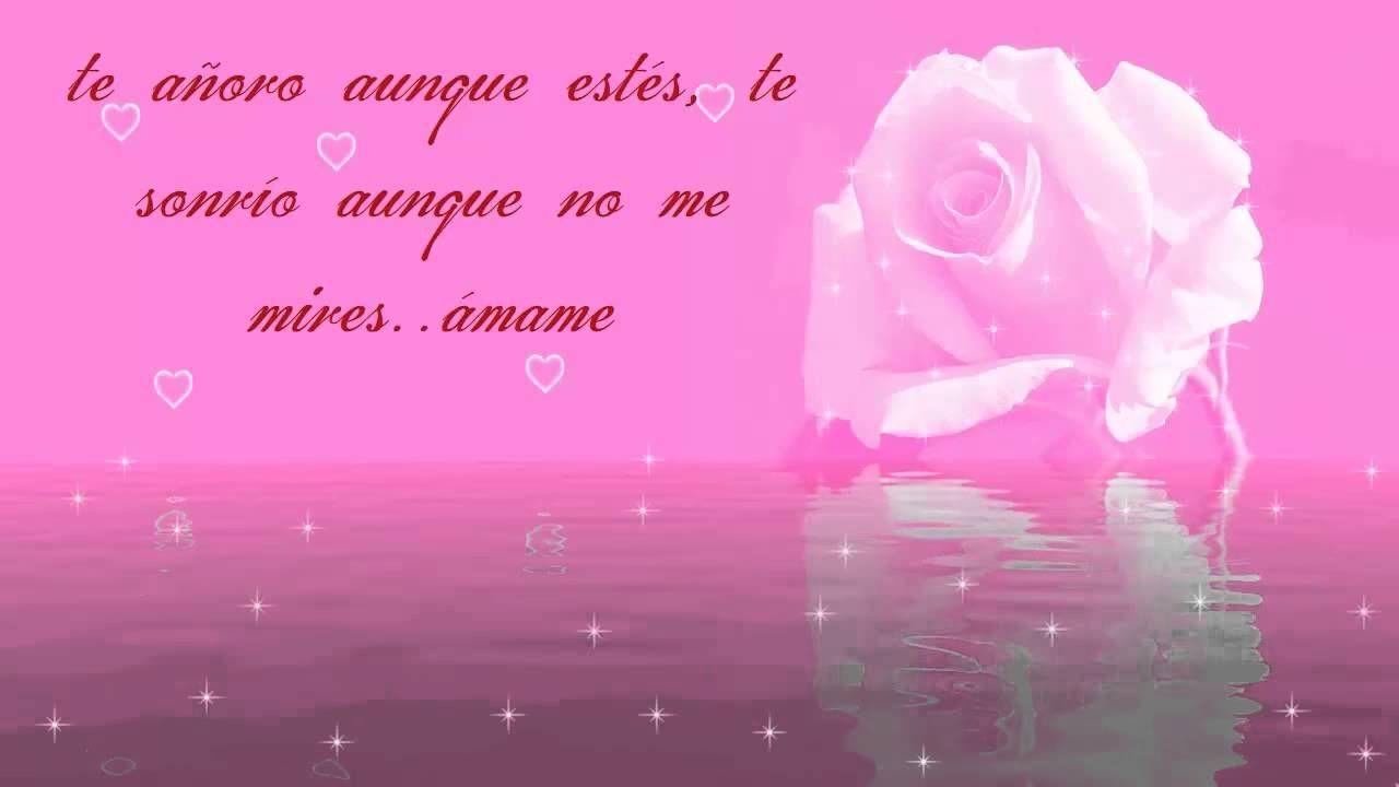 Video Con Frases De Amor Para San Valentin Dia De Los Enamorados 14