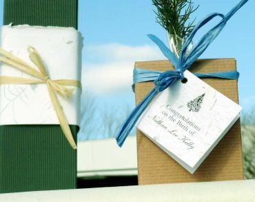 Tree Seedling Gift for Birth Announcements - Grow Memories that last a lifetime - NEW