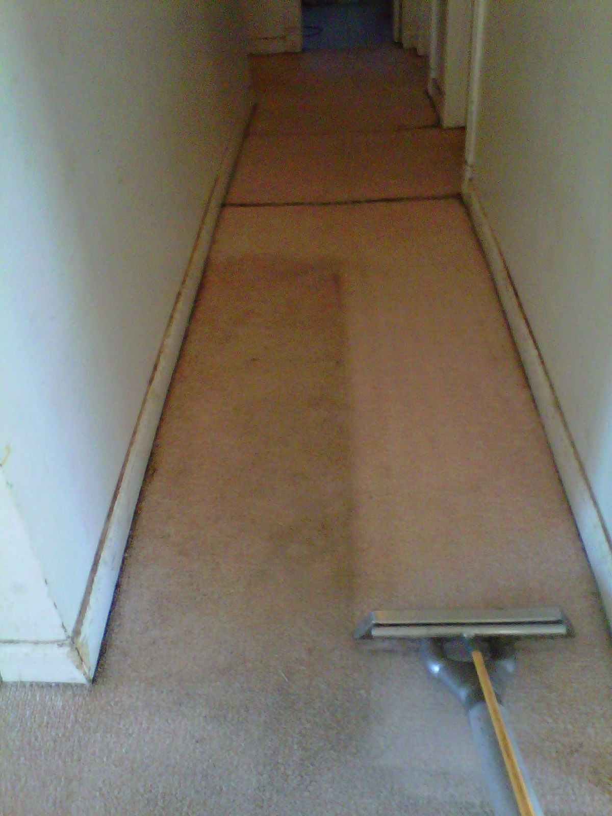 are you looking for carpet cleaning services in san diego area if so stanley steemer provides the best carpet cleaning and cleaners in san
