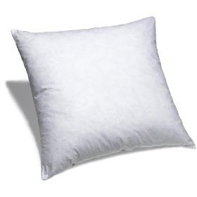 16X26 Pillow Insert Enchanting Pillow Inserts 22 X 22  20 X 20  13 X 19  17 X 17  18 X 18  24 Design Ideas