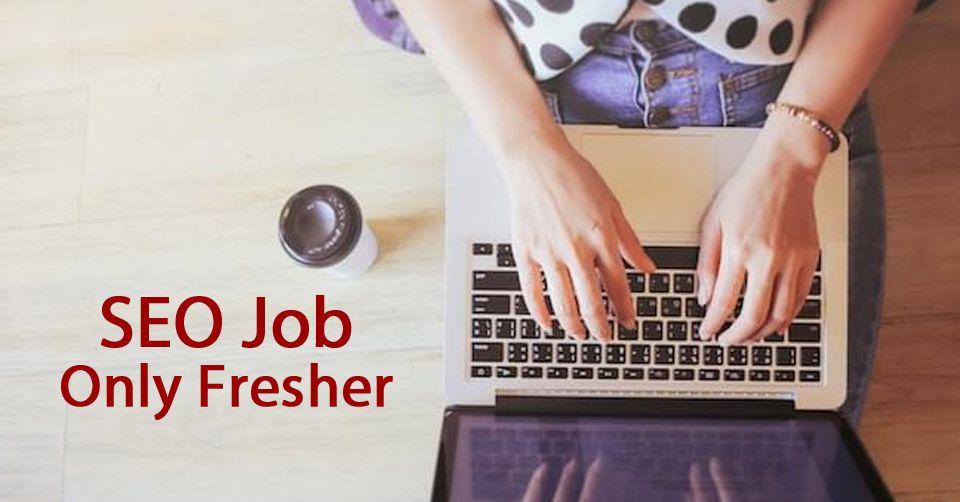SEO Job for Fresher Seo digital marketing, Jobs for