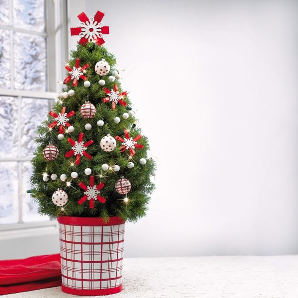 Simple Decoration Ideas Small Christmas Tree In Red And White Pot