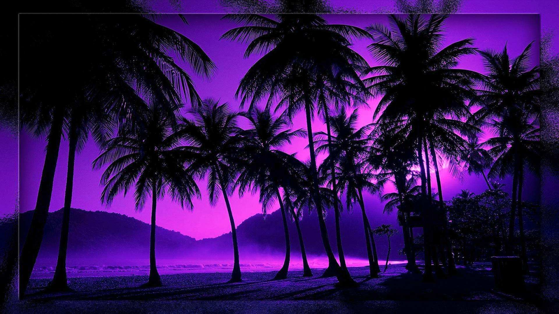 TROPICAL BEACH NIGHT WALLPAPER | Beach night, Beach at ...
