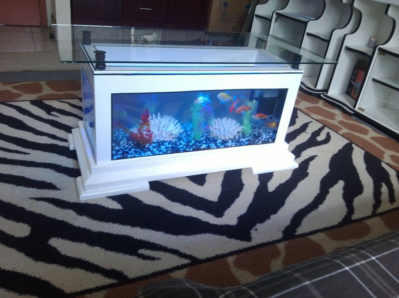 Coffee table aquariums wall mounted aquariums in kenya coffee table aquariums geotapseo Image collections