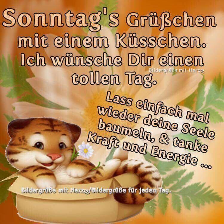Spruch Zum Sonntag Lustig Teddy Bear Good Morning Teddy