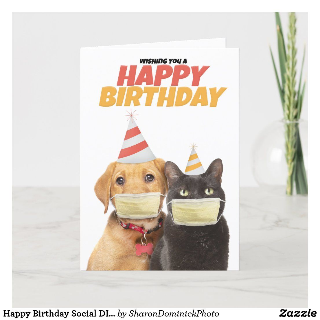 Happy Birthday Social Distancing Cat And Dog Humor Holiday Card Zazzle Com In 2021 Happy Birthday Dog Happy Birthday Cat Happy Birthday