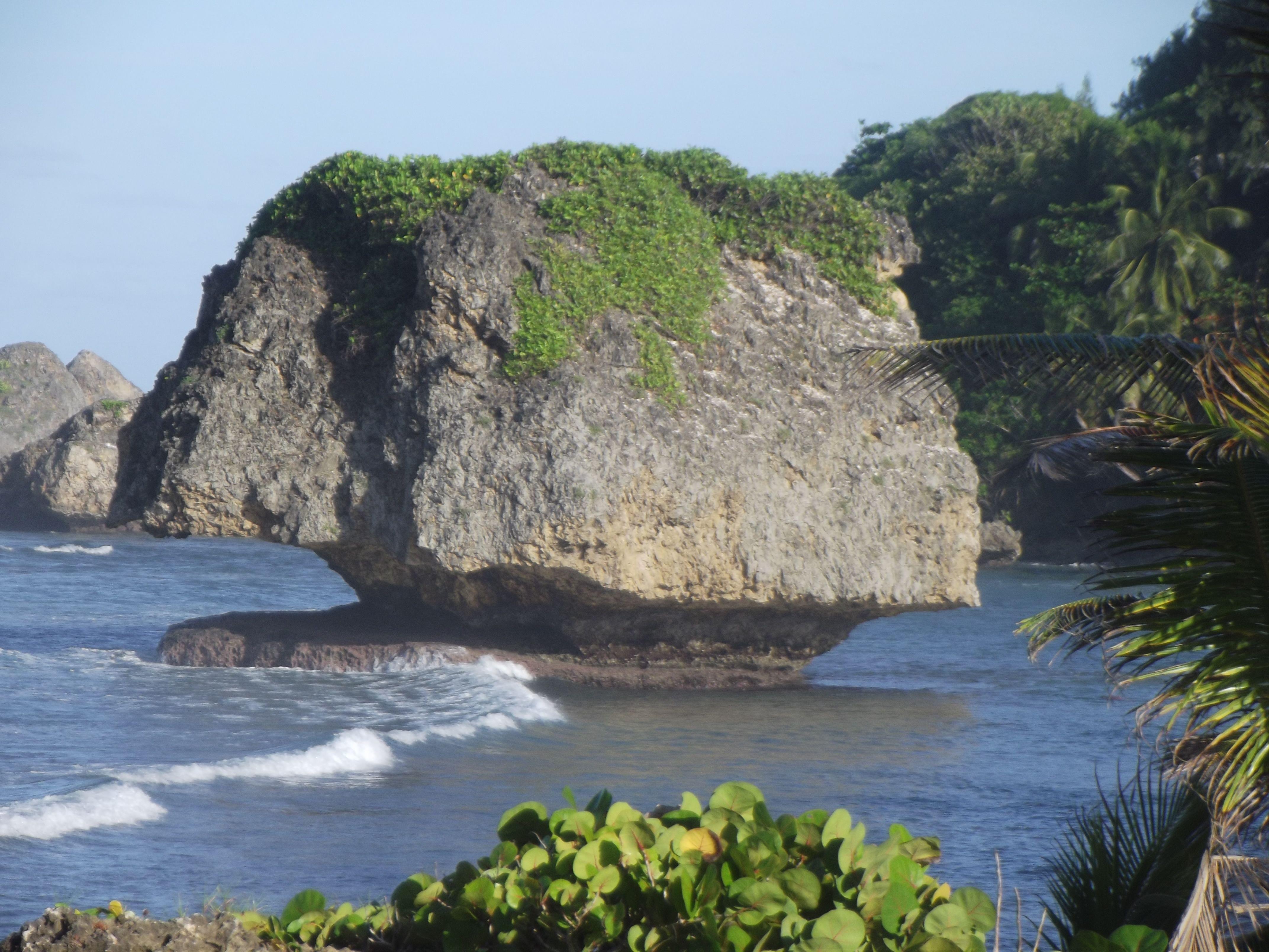 Mushroom Rock, Tent Bay, Bathsheba, Barbados, where Dustin