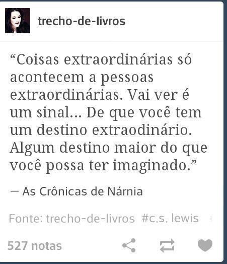 As Crônicas De Nárnia R E F L E X õ E S Chronicles Of Narnia