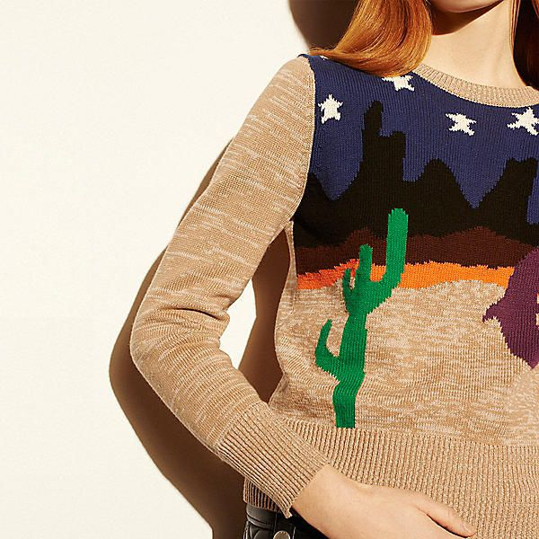 Desertscape Crewneck Sweater