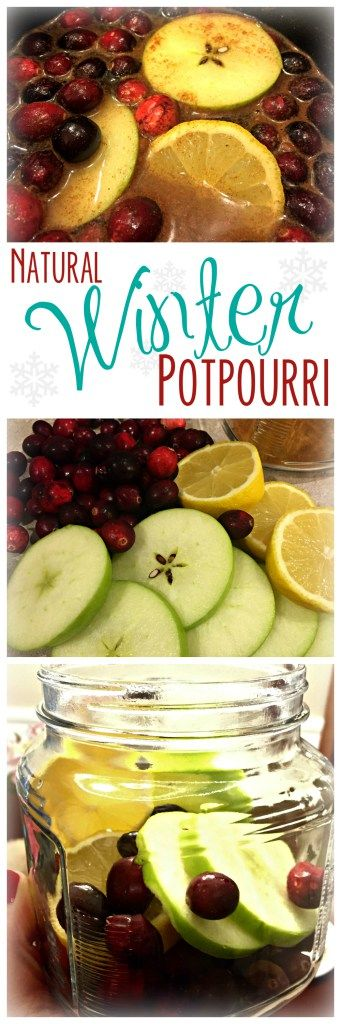 Natural Winter Potpourri
