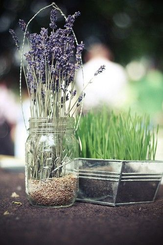 Lavender and wheat grass centerpieces fresh rustic