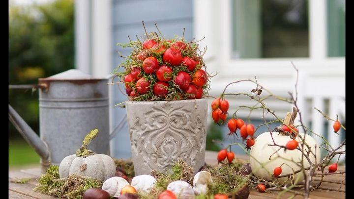 Im Frühjahr hat der Zierapfel leuchtenden Blüten, die den Garten bereichern, im Herbst lachen die kleinen süßen Früchte einem schon aus der Ferne entgegen. Das ist für mich Anlass genug um ein paar Dekoideen mit dem Zierapfel zu zeigen. #winterdecor #winterdekorationen #herbstdeko