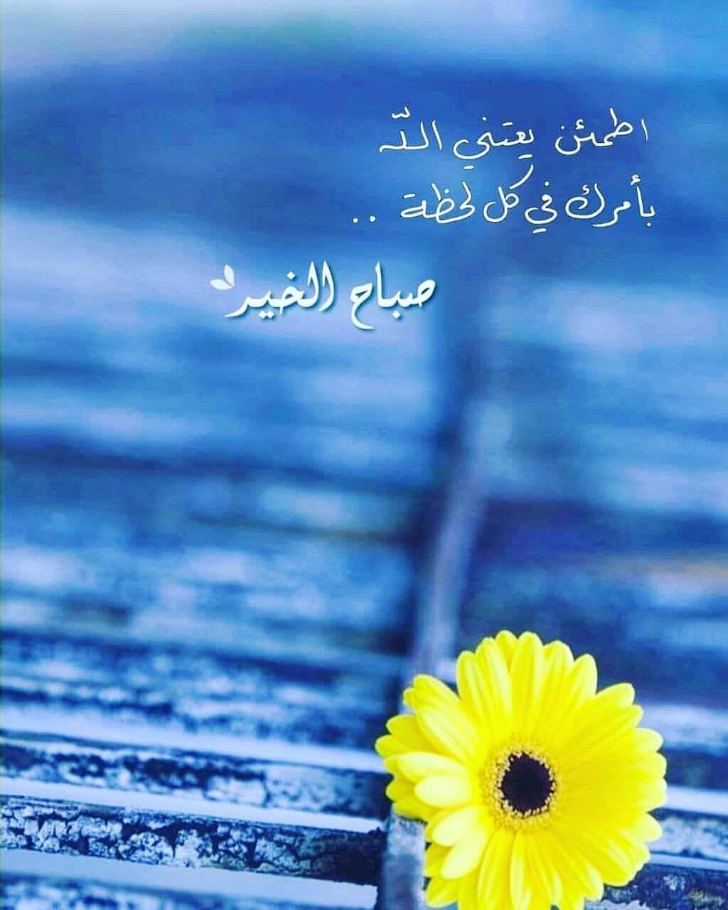 Pin By الصحبة الطيبة On صباحيات Flower Wallpaper Pictures Books To Read