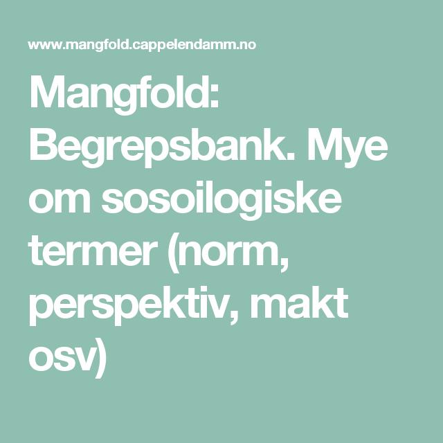 Mangfold: Begrepsbank. Mye om sosoilogiske termer (norm, perspektiv, makt osv)