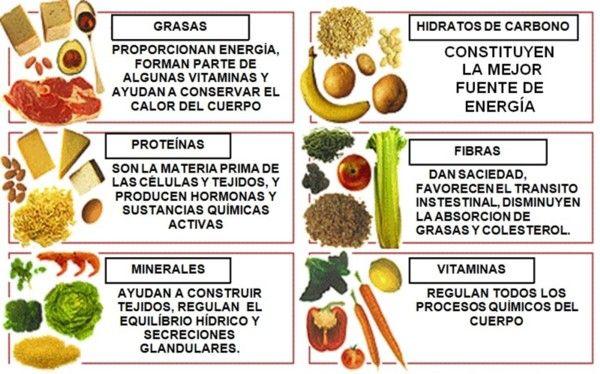 La Importancia De Los Alimentos Que Te Dan Energia La Importancia Que Tiene Cada Uno De Los Alimentos Q Alimentos Alcalinos Alimentos Actividades De Nutricion