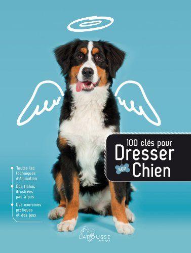 Dressage Des Chiens - 20 techniques à connaître - Éducateur canin - Gratuitement