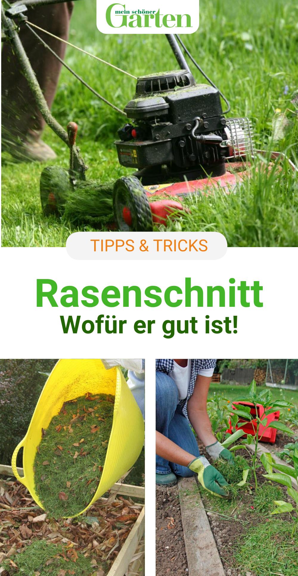 Rasenschnitt Zu Schade Fur Die Biotonne Garten Upcycling Rasen Balkongarten