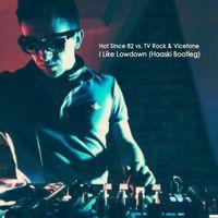 Hot Since 82 vs. TV Rock & Vicetone - I Like Lowdown (Haaski Bootleg) by Tim Haaski on SoundCloud
