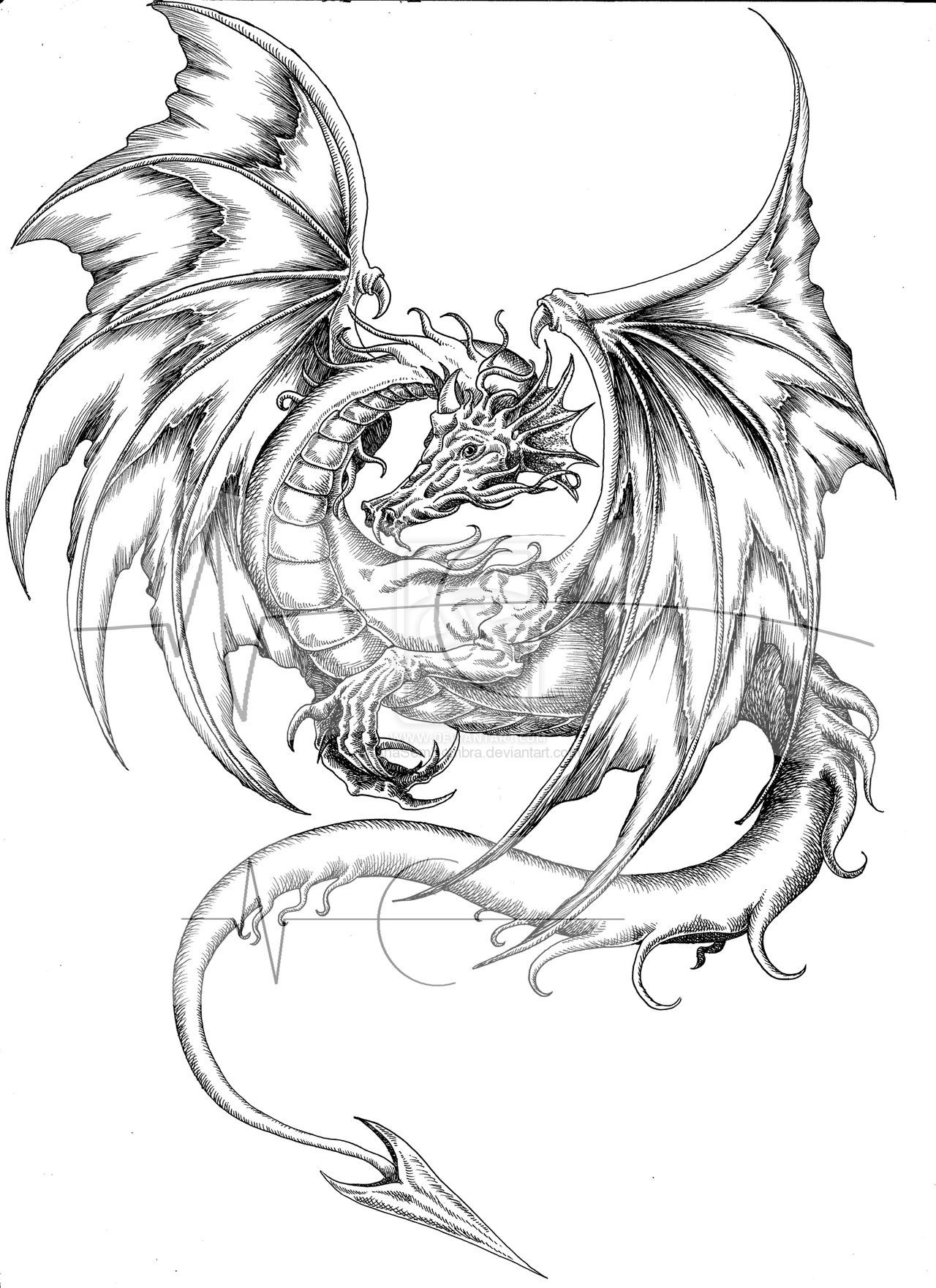 Line Drawing Dragon Tattoo : Coloring page dragon tattoo designs color pages