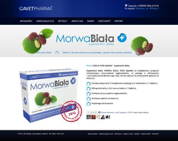 Morwa Biała Plus Web Design by Damian Muszkiet, via Behance