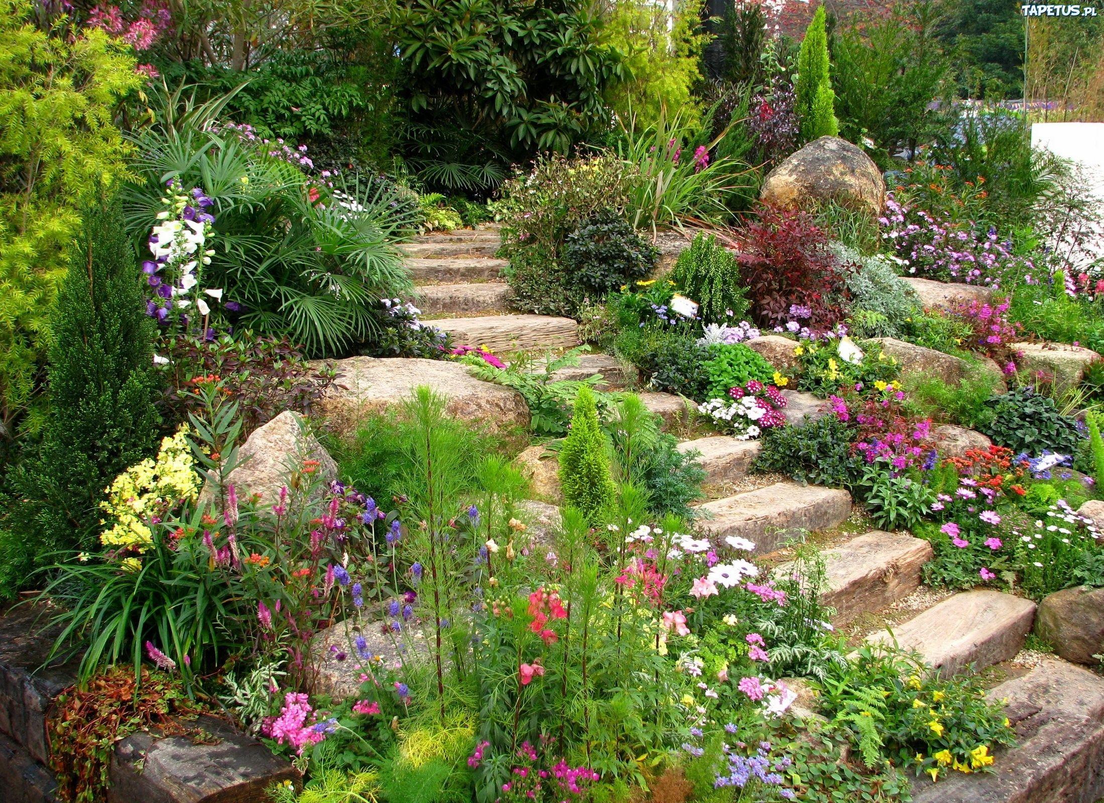 Creating A Rock Garden