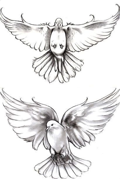 Cute Black And Gray Doves For Women Style Black And Gray Color Gray Tags Cute Nice Dove Tattoo Design Dove Tattoo Dove Tattoos