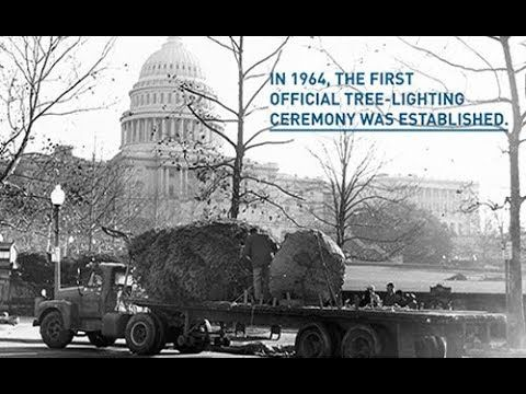US Capitol Christmas Tree Lighting A History - YouTube Events