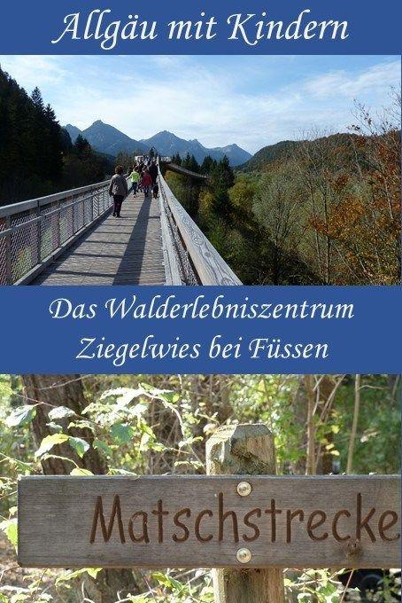 Sobre las copas de los árboles: el centro de aventuras forestales Ziegelwies cerca de Füssen