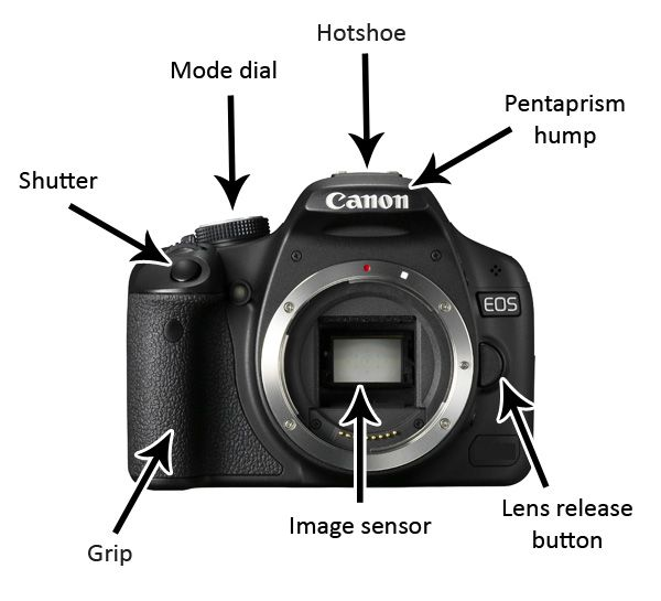 75df10cbfd45a7b0f1dd80df39d209a9 the basics of any dslr photography gear & tips pinterest
