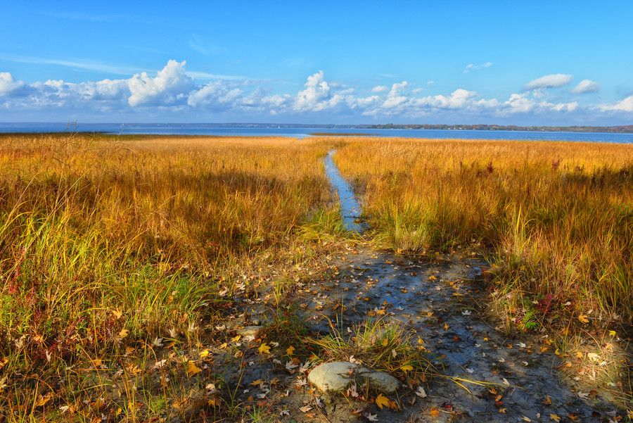 Over the Marsh by Chris Lockwood on 500px