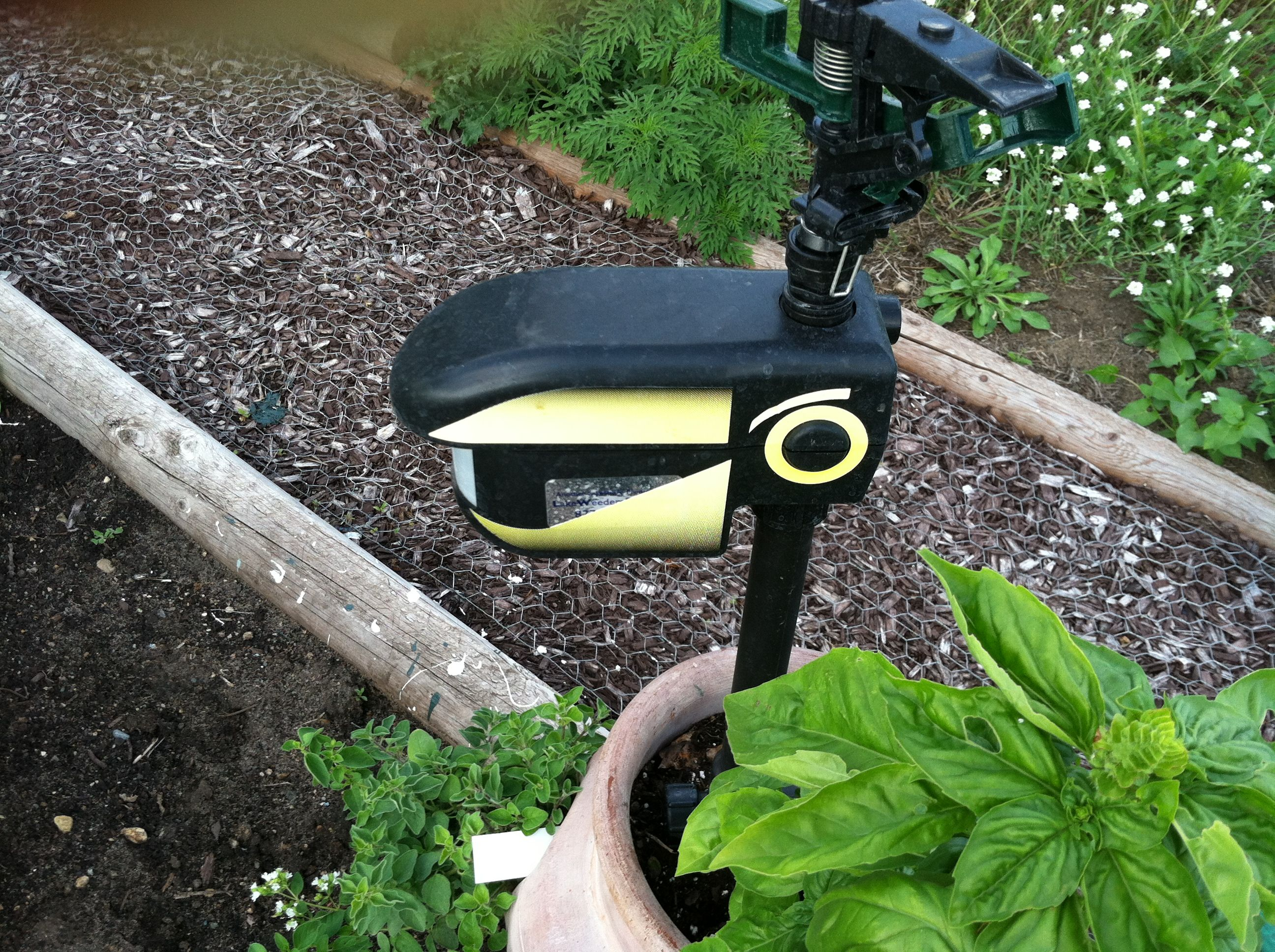 ScareCrow by Contech. www.contech-inc.com  Got Deer??? Motion activated sprinkler...LOVE THIS!