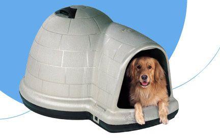 Igloo Dog House Indigo Igloo Dog House Small Dog House Dogs
