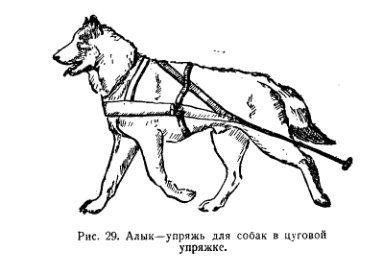 siwash dog harness variations Google Search Custom