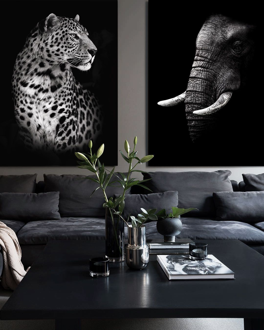 Leopard and elegant posters premium animal wall art print poster