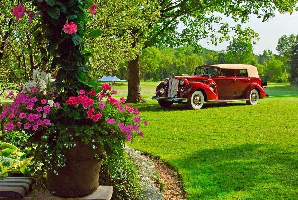 Packard Super Convertible Sedan Vehicles Packard Older