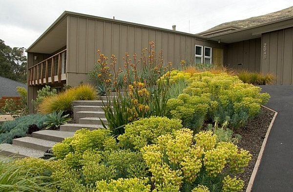 Zimmerpflanzen Gestaltungsideen gestaltungsideen für den vorgarten hanglage treppen pflanzen