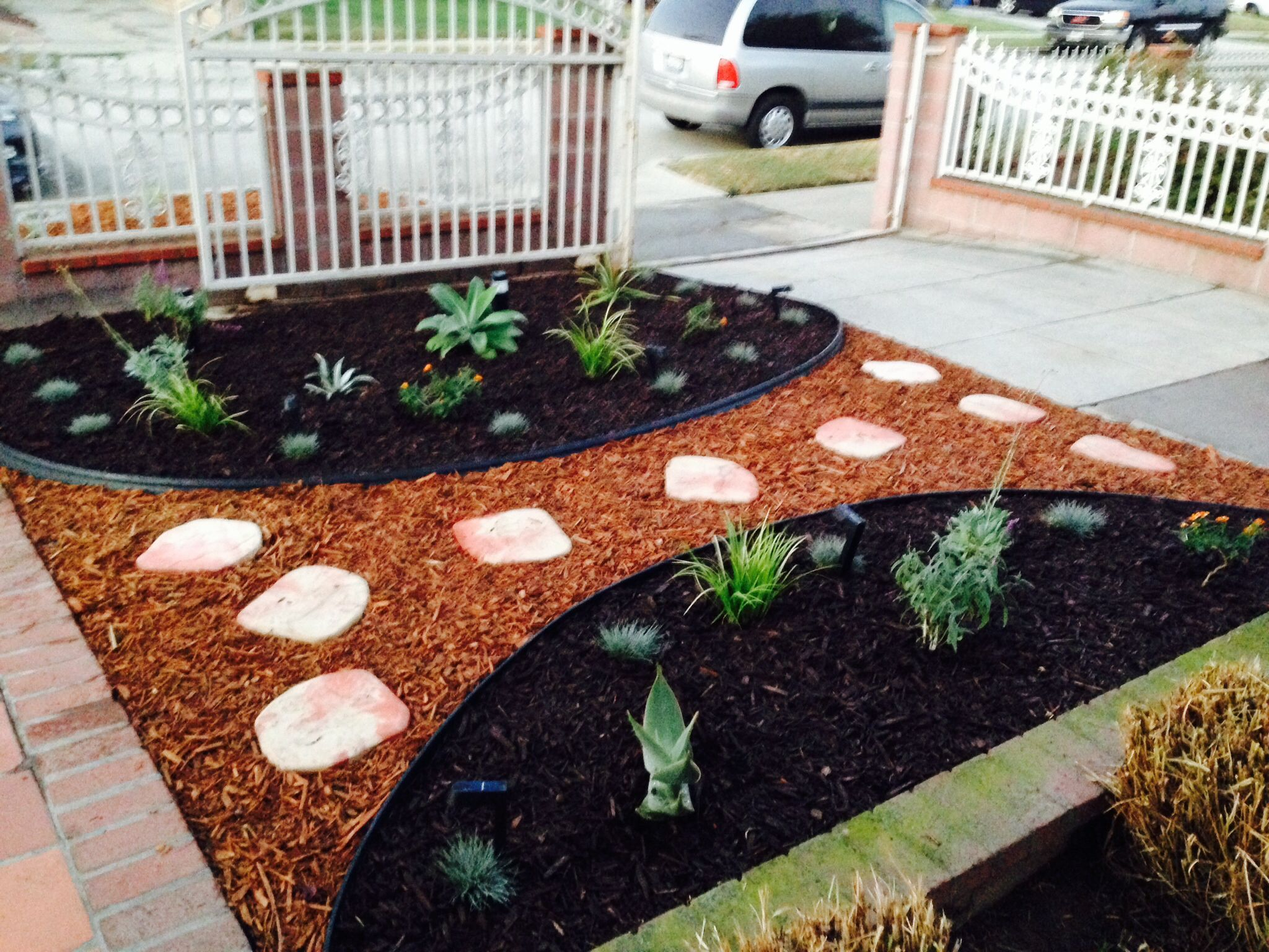 Drought Tolerant Plants With Red And Brown Mulch Brownmulch