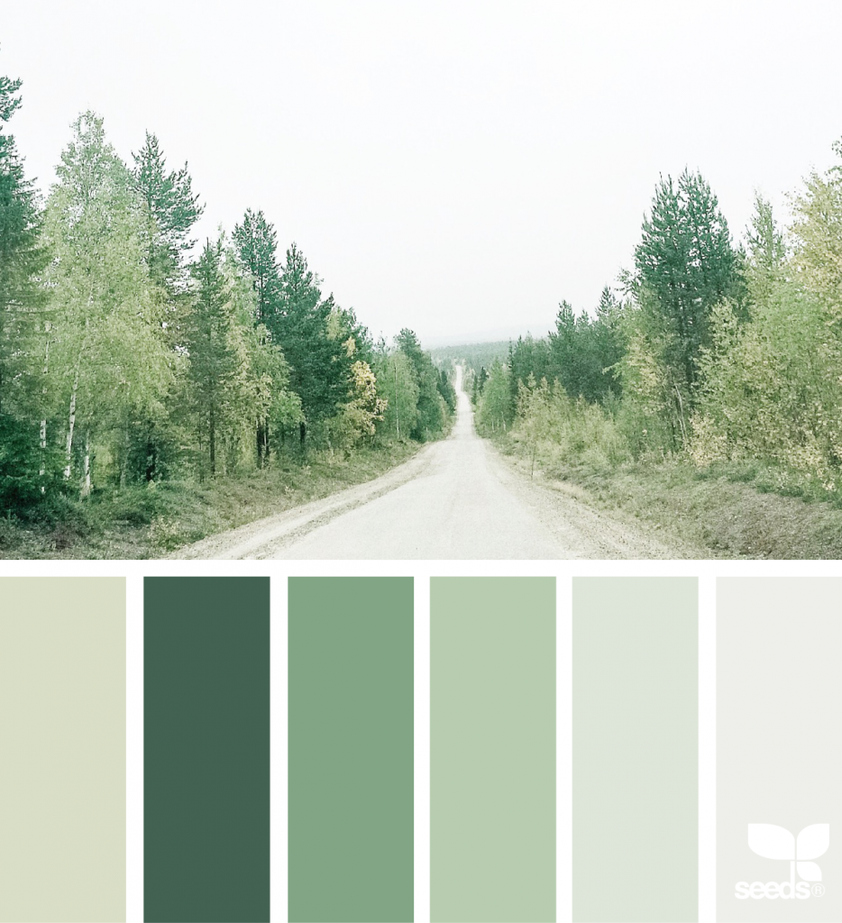 Color Road | Design seeds, Color combos and Color inspiration