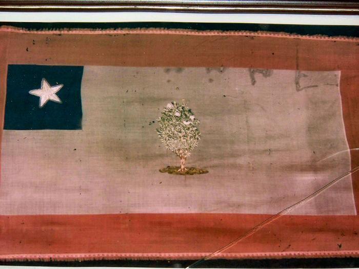 mississippi magnolia flag