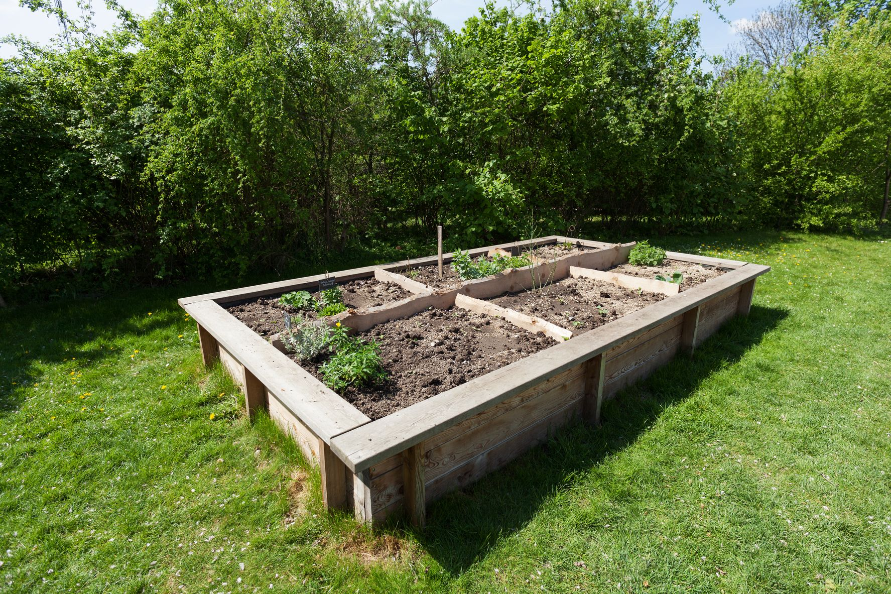 How to Build a Raised Garden Bed Building a raised